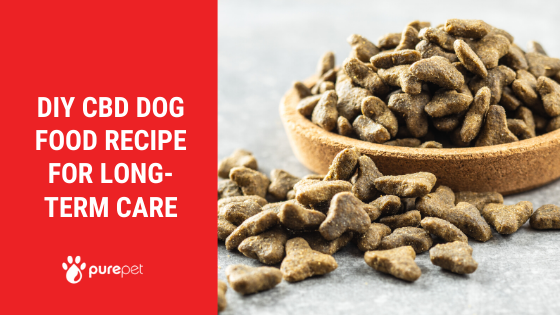 diy cbd dog food recipe